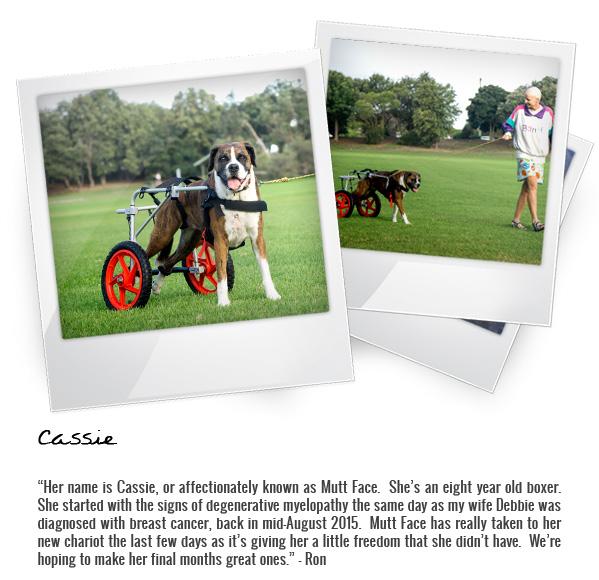 Cassie Polaroids_v2