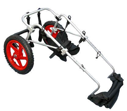 Large Rear Leg Support Wheelchair *Free Sports Harness In